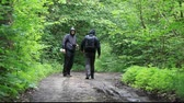 coat : Hikers with map and binoculars on forest trails episode 3 Stock Footage