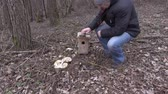 vysedět : Man take birdhouse and walking away
