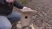 vysedět : Man hit nail into the birdhouse