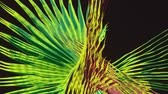 dijital teknoloji : Abstract moving background in yellow and green Stok Video