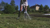 ancinho : Female working with rake on meadow Vídeos