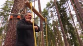 obstacle course : Man on zip line in forest