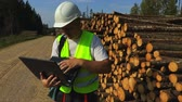 kask : Lumberjack checking log pile Wideo