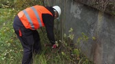 ствол : Worker clean concrete design from shrubs