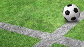 arremesso : Soccer ball bouncing on the pitch