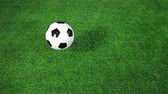 arremesso : Soccer ball bouncing on field in slow motion