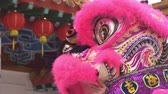 cultural tradition : Lion dance performance at local temple