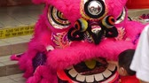 культурный : Child playing with lion dance performers