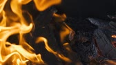combustão : Burning wood and coal in fireplace. Closeup of hot burning wood, coals.