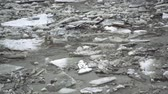 ice situation : Frozen ice river is melting in spring with ice flakes flowing. Cracked ice floating on the river in spring time. Global warming