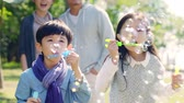 two little asian children boy and girl playing outdoors blowing soap bubbles with parents watching from behind. Стоковые видеозаписи