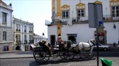 Horse and carriage at Giraldo square