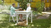 week end : Woman and man playing backgammon and talk. Stock Footage