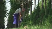nożyczki : Gardener in blue uniform is cutting bushes in big garden. Tall man does his job carefully. Male is working with big scissors. Shooting from the bottom