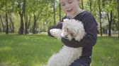 satisfeito : Handsome blond boy playing with his fluffy dog in the park, standing on the grass on his knees. The kid lifting up his adorable pet. Leisure outdoors, love to animals