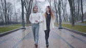 yelek : Portrait of young Caucasian couple strolling in autumn park and talking. Happy boyfriend and girlfriend dating outdoors. Man in retro style clothes and redhead woman walking along the alley Stok Video