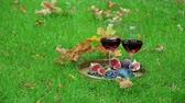roma : autumnal still life with red wine and berry Vídeos