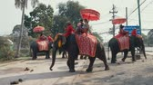 AYUTTHAYA, THAILAND - JANUARY 10, 2019: Group of elephants riding tourists along the street. Vidéos Libres De Droits