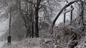 фехтование : Winter landscape in the far northern areas. Snowy Area Siberia, wooden fences. North Village in the winter. Стоковые видеозаписи