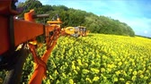 prasnice : View from the camera on the rod sprayer blooming sunflower. Videography of the operating sprayer in the field of the sunflower.