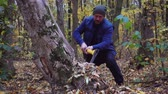 budowlanka : Ax slowing down. Forester chopping trees in the forest. Slow motion.