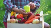 zwiebeln : Girls hands holds a box with fresh vegetables. Fresh vegetables in a box on the hands of a young girl. Stock Footage