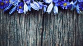 hobbies : Arrangement of flowers on a wooden board.