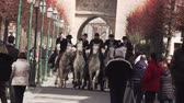 direkt : Riders on the white horses of Camargue ride through the streets of a medieval city.AIGUES-MORTES, FRANCE - February 25, 2018. Stok Video