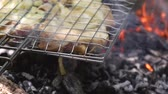Fresh meat baked in a metal grid on coals on a fire in the summer forest Stok Video
