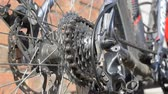 disk : New cassette with gears and chain on the rear wheel of old gray bike, new transmission in the work Stok Video