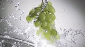 table grapes : Dynamic image of a bunch of hanging fresh ripe green grapes in a spray of water with an incoming spout and droplets flying through the air on a grey background with vignetting
