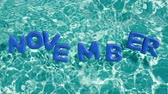 refração : word NOVEMBER shaped inflatable swim ring floating in a refreshing blue swimming pool, alpha 3d rendering 4K