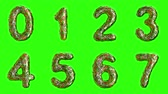 šupinatý : Alphabet from plastic with abstract holes isolated on a green background. The numeral 0 1 2 3 4 5 6 7 . alpha channel 3d rendering 4K Dostupné videozáznamy