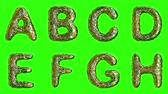 šupinatý : Alphabet from plastic with abstract holes isolated on a green background. A B C D E F G H . alpha channel 3d rendering 4K