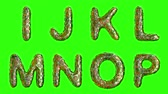 müsli : Alphabet from plastic with abstract holes isolated on a green background. I J K L M N O P . alpha channel 3d rendering 4K