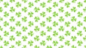 trevo : Animation Saint Patricks Day holiday background with motion green shamrocks. Luxury and elegant dynamic style template for holiday