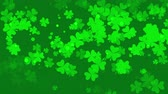 Motion green shamrocks, Saint Patrick Day animation background. Luxury and elegant dynamic style template for holiday Dostupné videozáznamy
