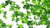 trevo : Motion green shamrocks, Saint Patrick Day animation background. Luxury and elegant dynamic style template for holiday Stock Footage