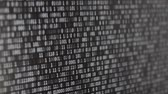 Binary Code Screen Stok Video