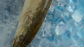 ling : Fish pike in the ice on the turntable. The table is spinning. Background blue under the ice. The camera is static. The fish is fresh. There is steam or smoke from the cold.