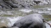 vacuity : Beautiful water in a mountain river in slow motion video. Shooting speed 60fps, slow motion. Live shooting of the most beautiful nature river mountain water. The camera is not static. River 2 part 1.