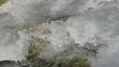 vacuity : Beautiful water in a mountain river in slow motion video. Shooting speed 60fps, slow motion. Live shooting of the most beautiful nature river mountain water. The camera is static.