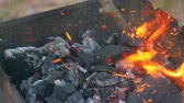grelhar : Coal burning in a brazier grill bbq. We have to cook meat, fish, sweet hot pepper, cutlet and sausages on these coals. The action takes place on a picnic. Stock Footage