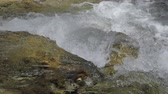 effluent : Beautiful water in a mountain river in slow motion video. Shooting speed 180fps, slow motion. Live shooting of the most beautiful nature river mountain water. The camera is static.