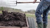 bereketli : Man spreads organic fertilizer on his own farm. soil fertilizer. Close up