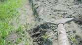 spades : A shovel digs a trench and throws away the earth. First person view Stock Footage