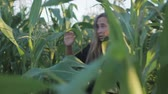 panik : Haunted young girl running away from a maniac, shes scared. Girl dressed in black t-shirt and shorts, hair disheveled. Thriller in corn. Handheld shot. Live camera