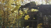abandoned park : Panoramic view of the old, destroyed, wooden house in the deciduous autumn forest. 4K