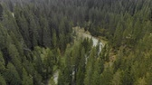 tempesta : Aerial view of the turbulent river flowing among the spruce forest in the highlands. The concept of rafting