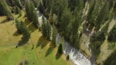 fırtınalı : Aerial view of the turbulent river flowing among the spruce forest in the highlands. The concept of rafting